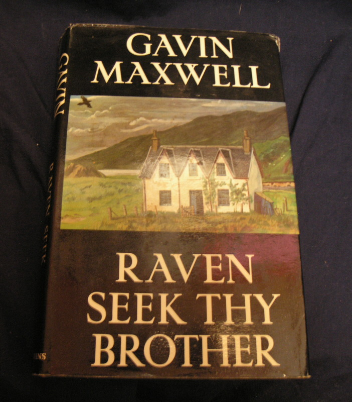 Image for Raven Seek Thy Brother