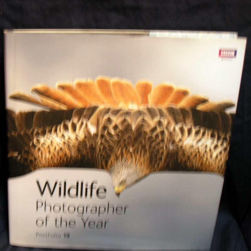 Image for Wildlife Photographer of the Year