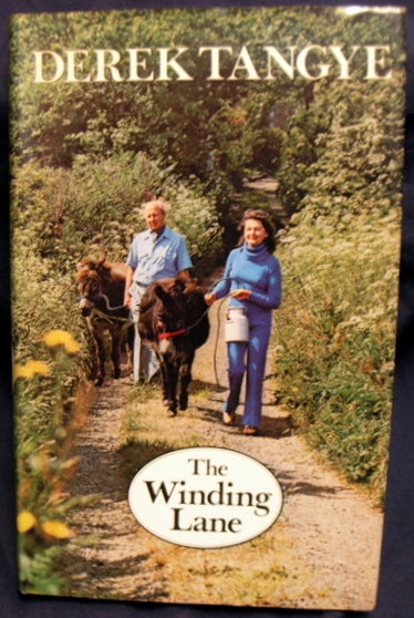 Image for The Winding Lane.