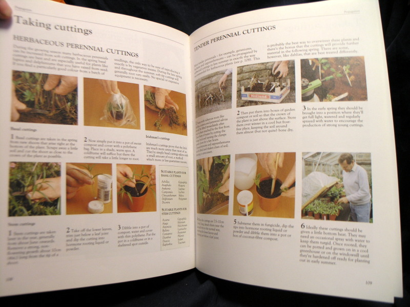 Image for Gardeners' World: Practical Gardening Course : The Complete Book of Gardening Techniques