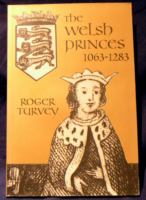 Image for Welsh Princes, The: The Native Rulers of Wales 1063-1283