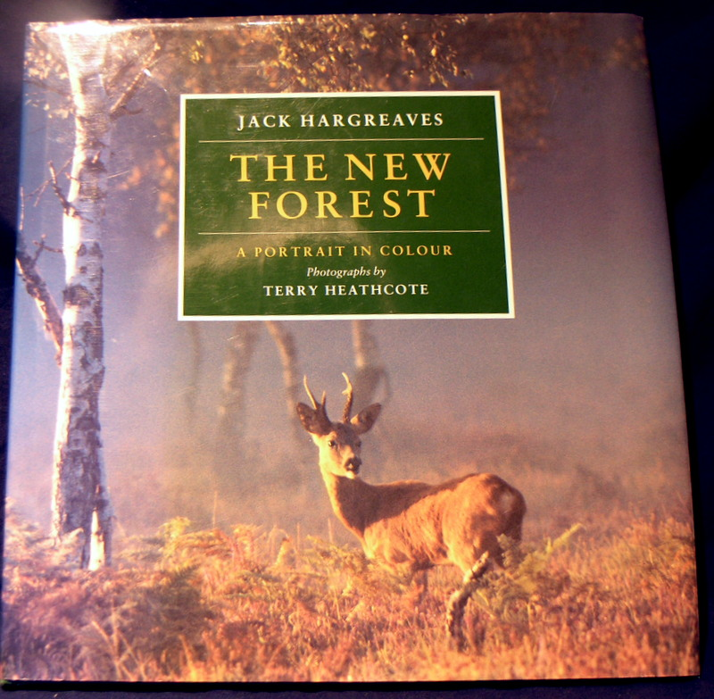 Image for The New Forest: A Portrait in Colour