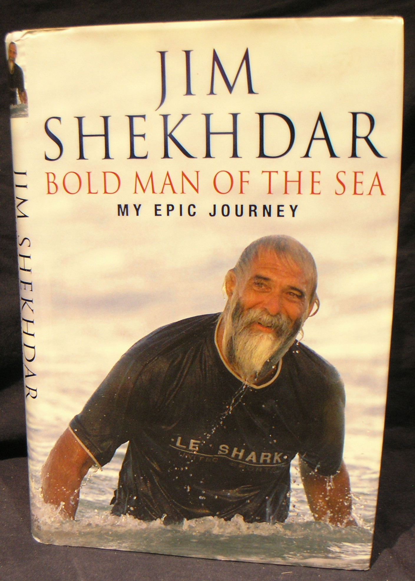 Image for Bold Man of the Sea: My Epic Journey