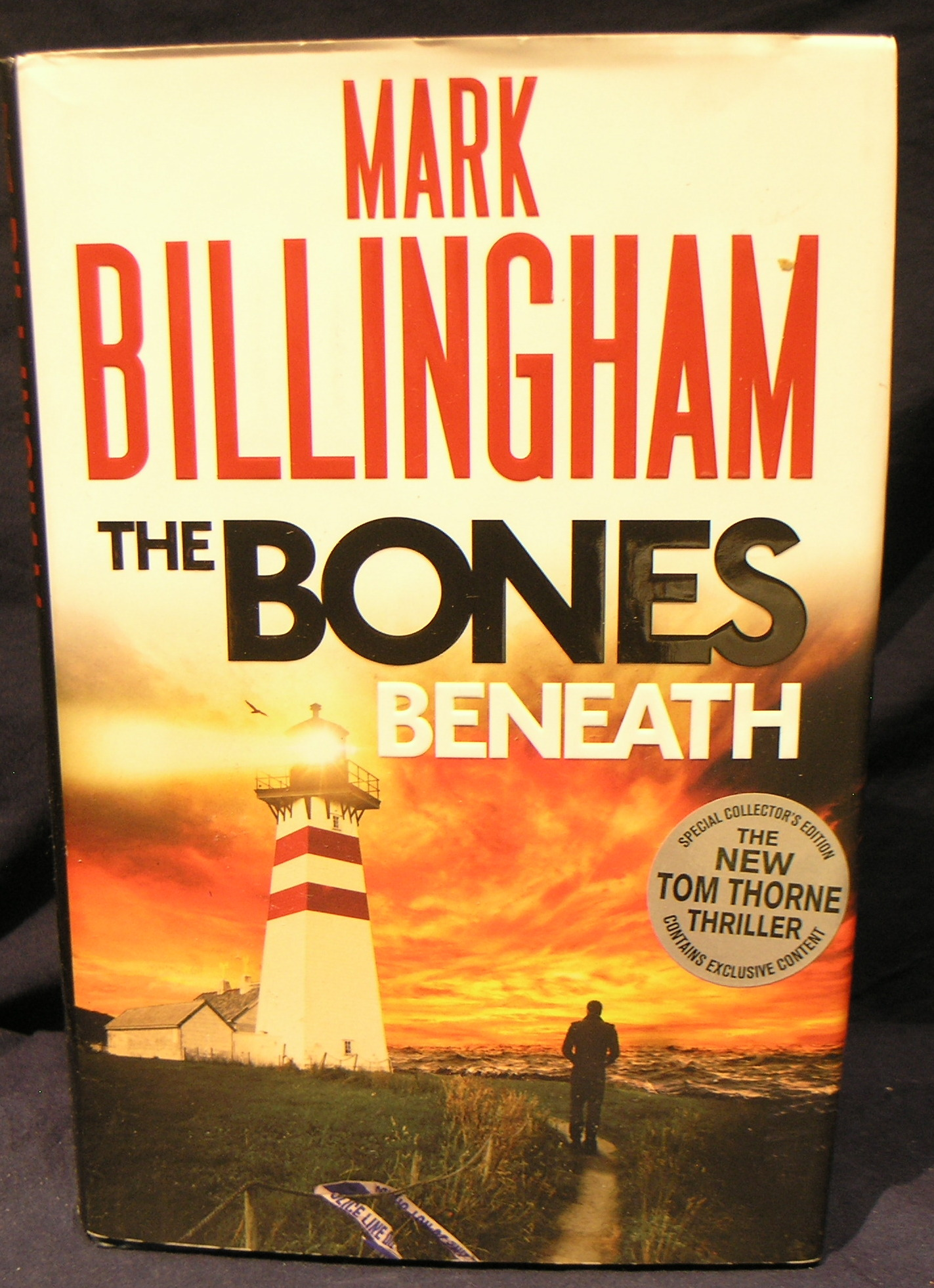 Image for The Bones Beneath