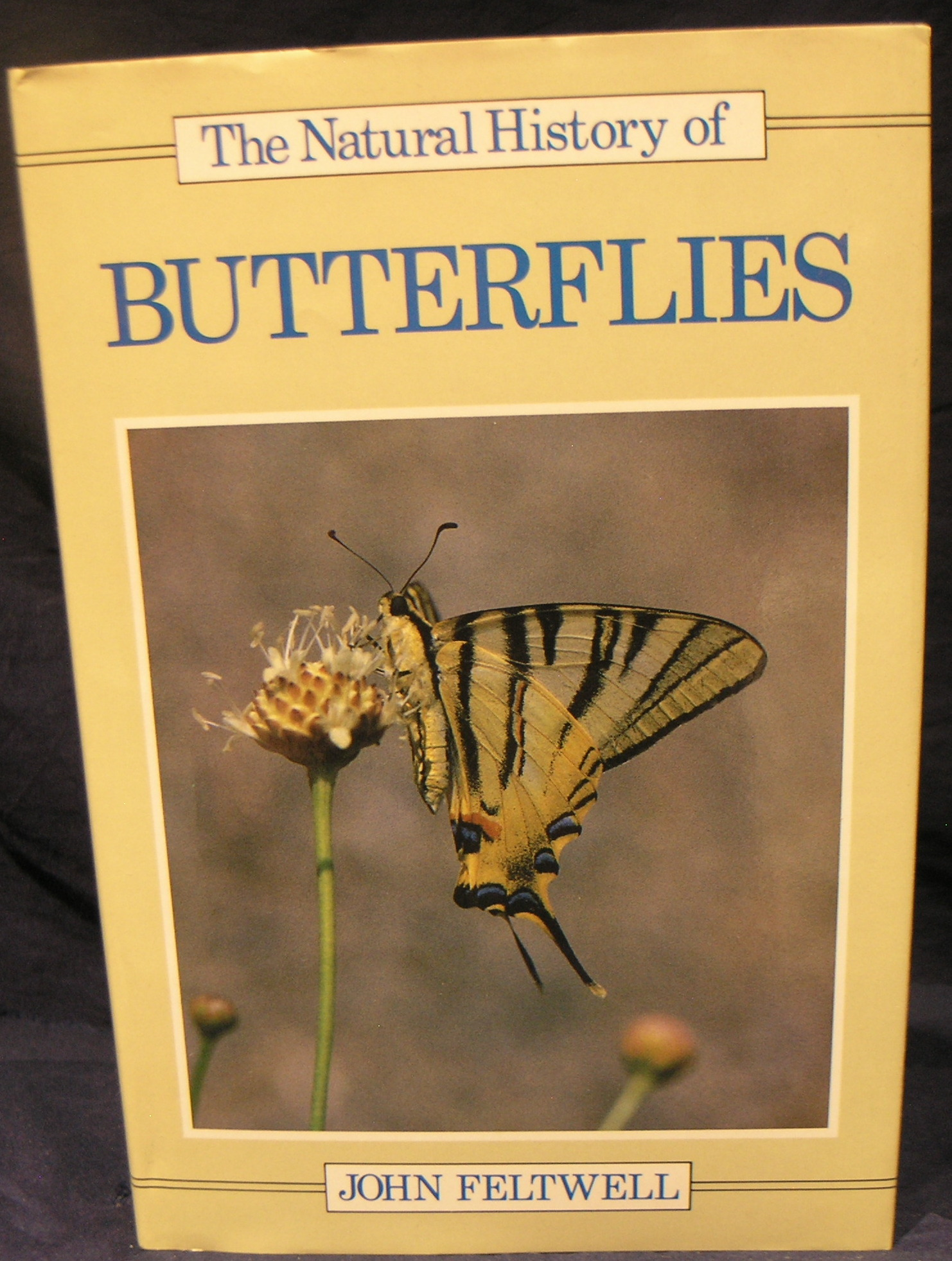 Image for The Natural History of Butterflies