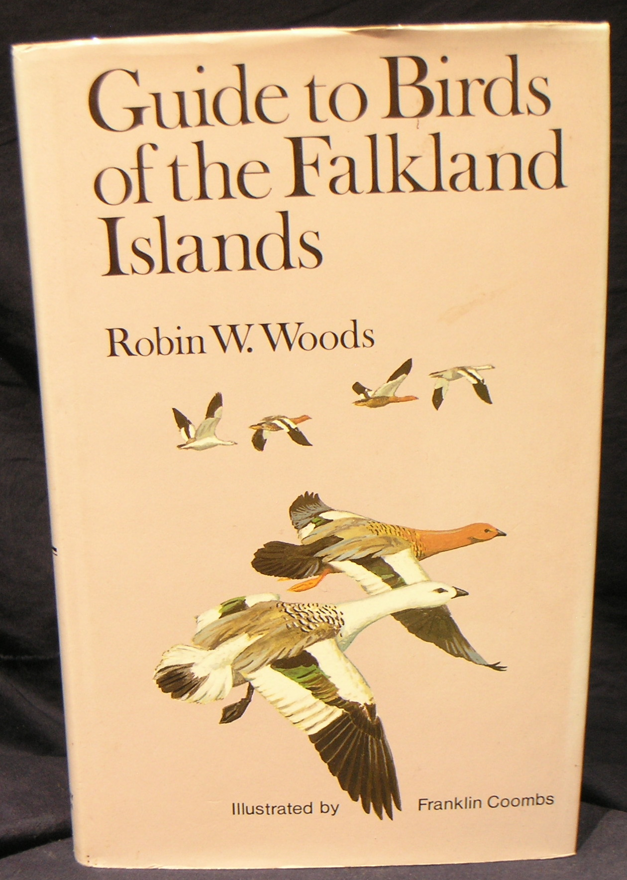 Image for Guide to the Birds of the Falkland Islands