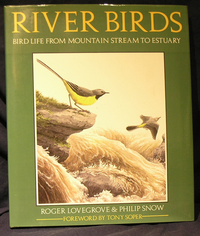 Image for River Birds: Bird Life from Mountain Stream to Estuary