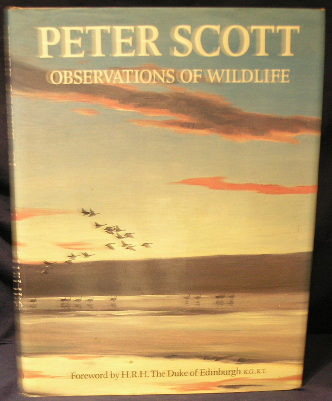 Image for Peter Scott: Observations of Wildlife