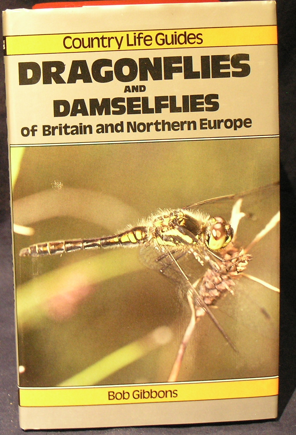 Image for Dragonflies and Damselflies of Britain and Northern Europe
