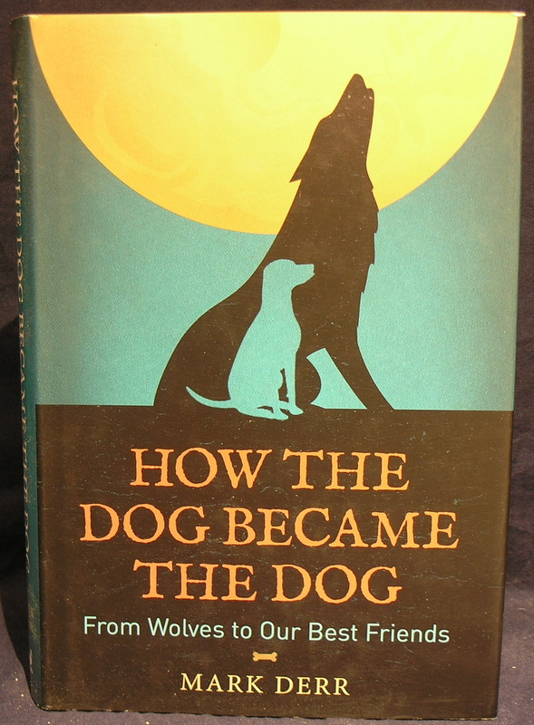Image for How the Dog Became the Dog