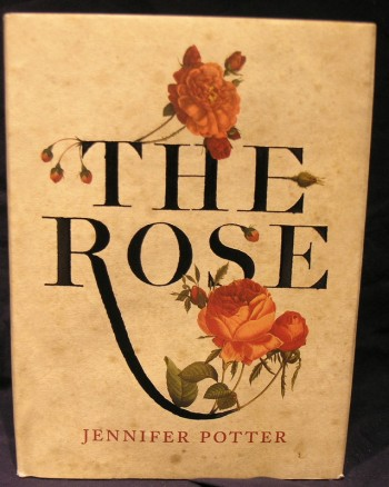 Image for The Rose