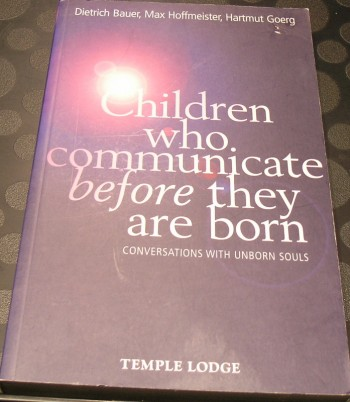 Image for Children Who Communicate before They Are Born: Conversations with Unborn Souls