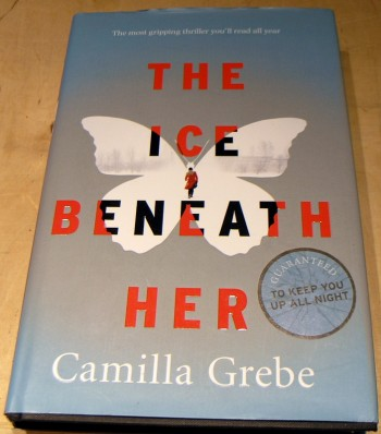 Image for The Ice Beneath Her