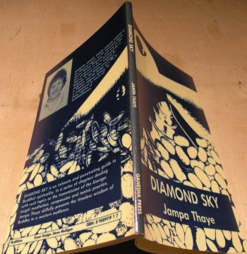 Image for Diamond Sky: A Brief Introduction to the Buddhist Path