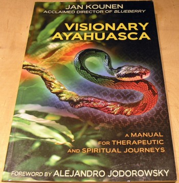 Image for Visionary Ayahuasca: A Manual for Therapeutic and Spiritual Journeys