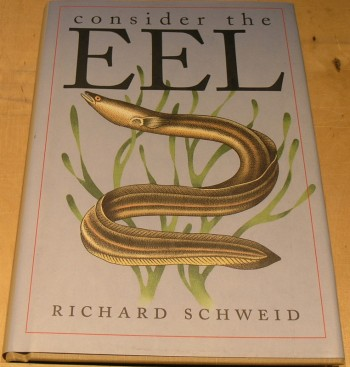 Image for Consider the Eel