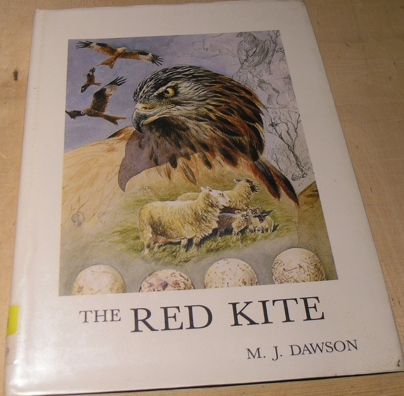 Image for The Red Kite (Caliologists Series No. 1 )