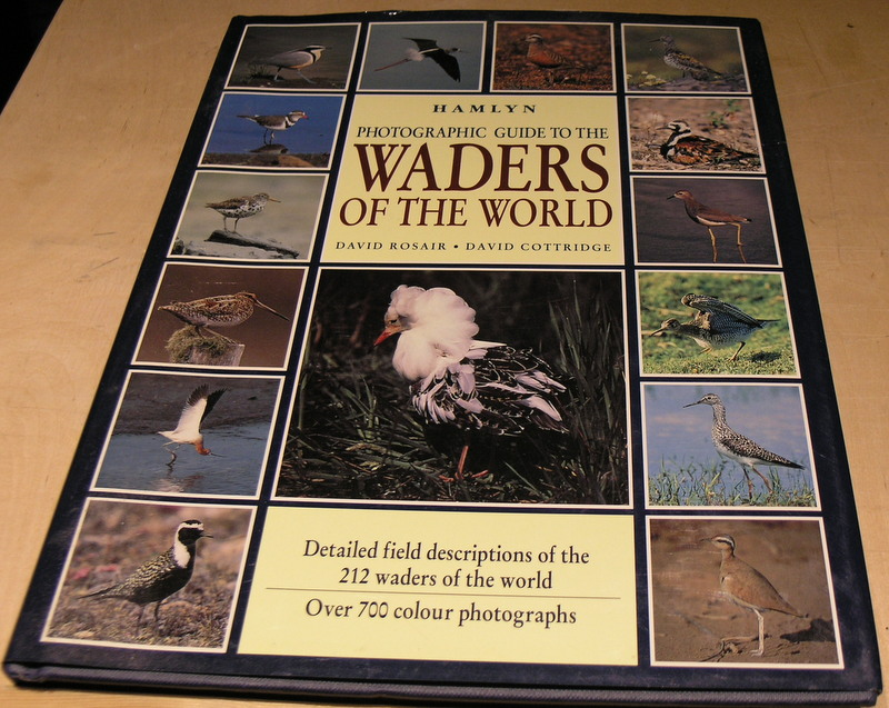 Image for Photographic Guide to the Waders of the World